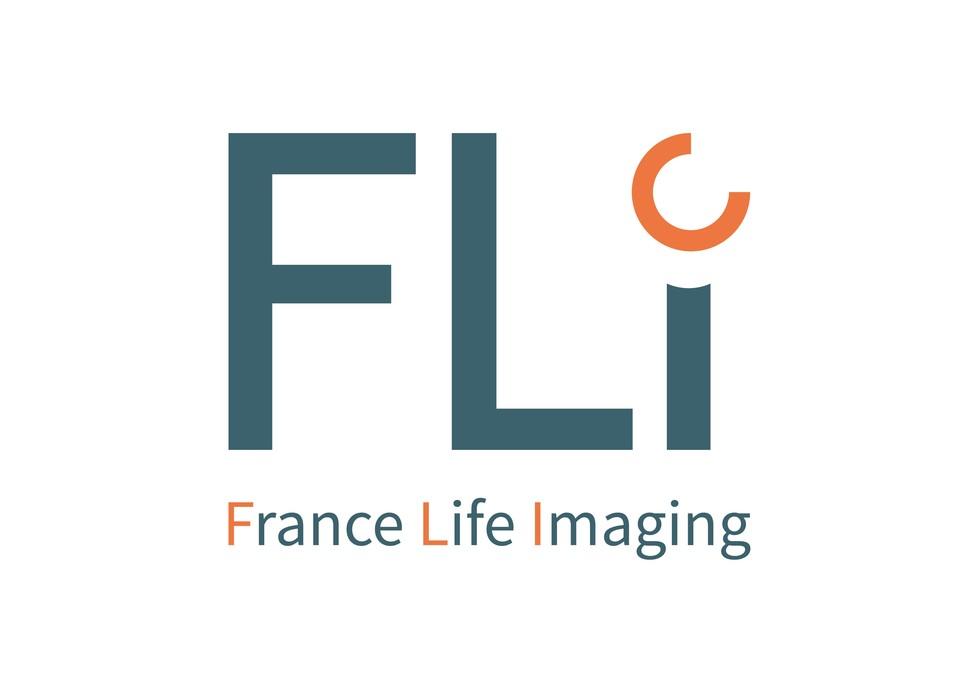 FRANCE LIFE IMAGING